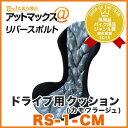 Rs-1-cm