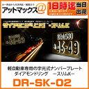 Dr-sk-02_1-1