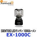Ex 1000c