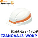 Izanoaa13 wokp