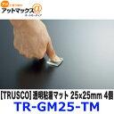 Tr gm25 tm
