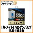 Bd1029