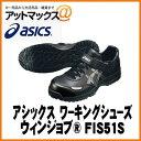 Fis51s