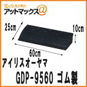 Gdp 9560