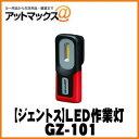 Gz101