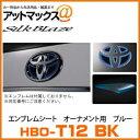 Hbo t12