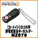 Nz979