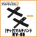 Rv-55