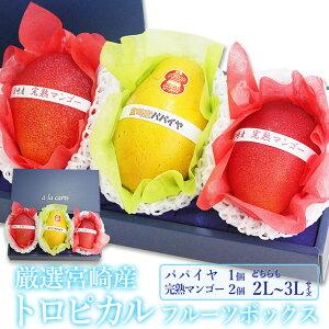 厳選 国産 トロピカル フルーツボックス 完熟マンゴー(2個) パパイヤ(1個)(2L〜3Lサイズ)宮崎産 パパイヤ 宮崎マンゴー プレゼント 手土産 お返し 誕生日 フルーツ 景品 出産 フルーツ 果物
