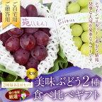 【期間限定】国産美味ぶどう2種食べ比べギフトセット(シャインマスカット長野産、紫苑岡山産)