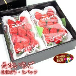 【送料込|あす楽】人気&厳選 いちご ギフトF福岡産 あまおう 2パック プレゼント 手土産 お返し 誕生日 お礼 出産祝い 出産 イチゴ 苺 フルーツ 果物 内祝い お供え お悔やみ 贈り物 お返し
