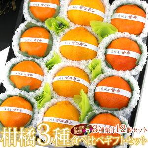 【送料込】国産 美味 柑橘 3種 食べ比べギフトセット(12個入) お祝 プレゼント 手土産 誕生日 お礼 法事 結婚祝い 出産 引き出物 コンペ 贈り物 みかん くだもの フルーツ 果物 内祝い お供え