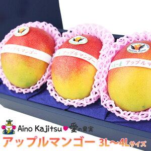 【送料込】アップルマンゴー(3L〜4Lサイズ 3個セット) 手土産 誕生日 お礼 出産 フルーツ 果物 内祝い お供え お悔やみ プレゼント ギフト 贈り物 お供え物 限定 母の日 お返し お中元 御中元
