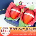【送料無料】【神内(じんない)夏 マンゴー】(2Lサイズ以上(350g以上)・2個セット)(北海道産)完熟マンゴー(糖度…