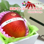 宮崎産完熟マンゴー7500