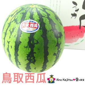 鳥取産大栄すいか(西瓜)(2L)4500円