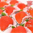 【4月25日着まで】【送料込】【大粒】夢いちご(品種:ゆめのか)10粒 美容 甘い イチゴ 苺 プレゼント お礼 誕生日 …
