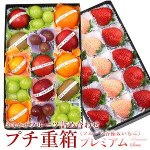 【送料込】プチ重箱プレミアム FPJ-5(プチフルーツ15個 いちご2〜3種15個) あまおう あわゆき ゆめのか いちご 苺 プレゼント 内祝い 誕生日 お礼 快気祝い お祝い 果物 くだもの ギフト 贈り物