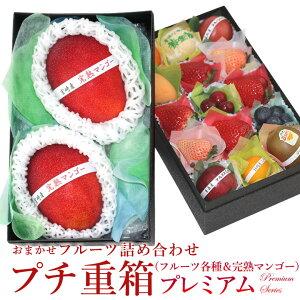プチ重箱プレミアム FPJ-9(プチフルーツ15個 完熟マンゴー(2L〜3L)2個) マンゴー 詰め合わせ プレゼント 内祝い 誕生日 お供 お礼 快気祝い お祝い お供え 果物 くだもの ギフト 贈り物 母の