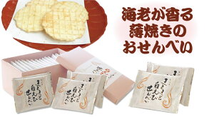 富山 しろえび 白えびせんべい きときと白えびせんべい32枚(2枚×16袋) シロエビ 煎餅 きときと 富山湾 おみやげ あいの風