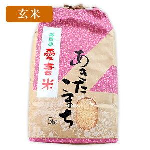 あきたこまち 愛妻米 岩手県産 玄米 5kg 送料無料 | 米 5キロ お取り寄せ いわて 岩手 減農薬 農家 直送 令和元年 予約