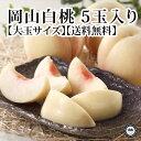糖度12度以上 岡山の桃 約300g×5玉 化粧箱入り 送料無料