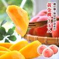 みずみずしい桃をお中元ギフトに!桃の名産地の美味しいブランドを教えて!