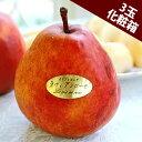 西洋梨 カリフォルニア ラヴィアン ローゼ 約1.2kg(3玉入り) 長野県小布施町産 浪漫豊果 化粧箱入り | 梨 なし 洋梨 …