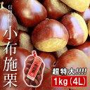 小布施栗(おぶせくり) 超特大 4Lサイズ 約1kg 長野県小布施町産 送料無料