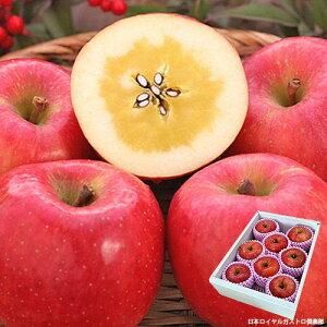 幻の蜜入り りんご 高徳 こうとく 約2kg 6〜9玉入り 秀品 山形県産 送料無料 | フルーツ ギフト くだもの 果物 林檎 リンゴ 誕生日プレゼント 米寿 喜寿 祝い 内祝い 卒寿 還暦祝い お祝い 古希