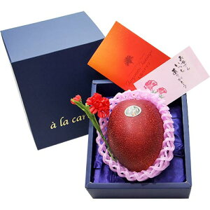 母の日 ギフト 太陽のタマゴ 1玉(350g以上) 完熟 マンゴー 宮崎県産 カーネーション(造花) 母の日カード 化粧箱入り 送料無料 | かわいい 母の日 プレゼント 果物 食べ物 フルーツ フルーツギフ