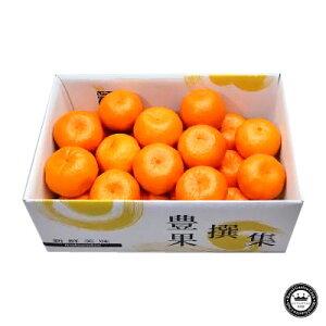 ポンカン 愛媛県産みかん(蜜柑) L〜2L寸 約3kg 20〜25玉 送料無料 | みかん ミカン 愛媛 蜜柑 通販 取り寄せ 詰め合わせ フルーツ くだもの 果物 ギフト プレゼント 贈答用 ご贈答 贈り物 お祝い