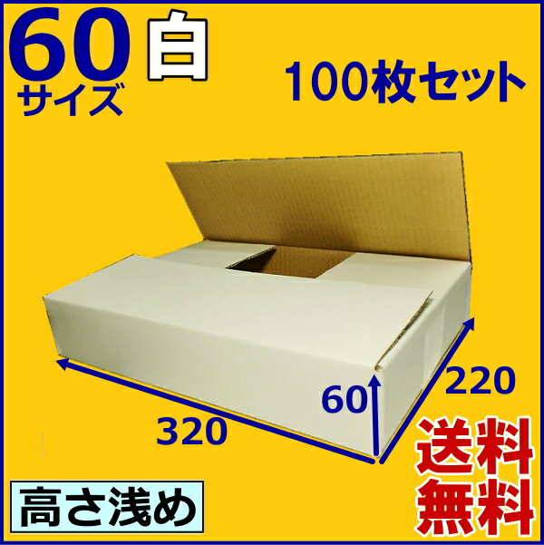 ★送料無料★白ダンボール箱60サイズ 100枚 段ボール箱/ホワイト/白ダンボール 無地