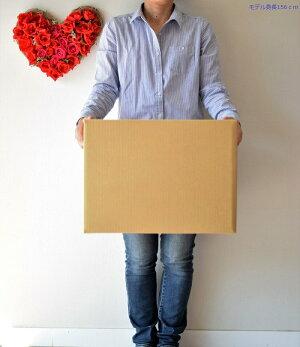 120サイズ強化ダンボール箱20枚セット段ボール箱/引越し用【あす楽対応】