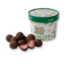 六花亭ストロベリーチョコミルクパッケージ