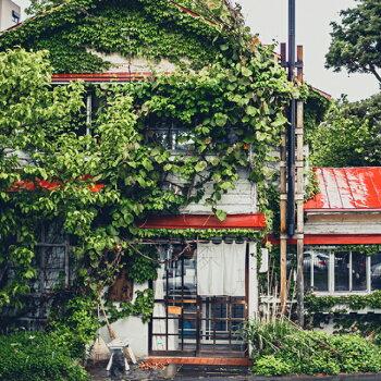札幌円山森彦の珈琲ブラック270ml缶コーヒー