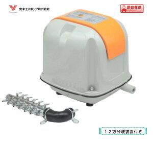 安永 エアーポンプ AP-40(12方分岐装置付き) 安永エアポンプ 浄化槽 ブロワー 【水槽】