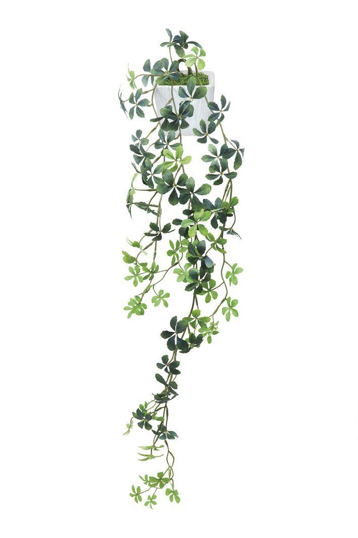 【送料無料】人工観葉植物 光の楽園 壁掛シュガーバイン 528A50【造花/フェイク/リビング/玄関/アートフラワー/インテリアグリーン】