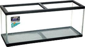 【ペット用品】ペット用 ニッソー NS-11MS 黒(ガラスフタ付)【水槽 各サイズ別に送料別】
