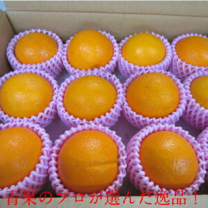 オレンジ 12玉