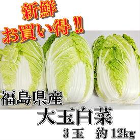 送料無料!!福島県産 大玉白菜3玉 約12kgはくさい 福島 冬野菜 鍋 漬物 お歳暮 歳暮 大玉