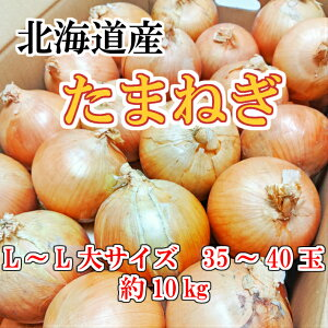 送料無料!!北海道産玉ねぎ L〜L大サイズ35〜45玉 約10kg秀品 たまねぎ 玉葱 サラダ スープ お買い得 業務用 巣ごもり