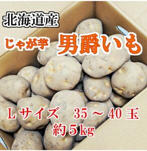送料無料!!北海道産じゃが芋 男爵いもLサイズ 35〜40玉 約5kg北海道 じゃがいも 芋 だんしゃく お買い物 巣ごもり