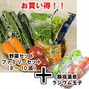 鮮度バツグン!!市場より直送!!野菜セットファミリーセット