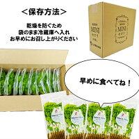 送料無料!!福島県産ミニセロリ40g×10袋福島セロリミニセロリサラダ新鮮お買い得