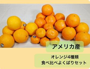 送料無料!!アメリカ産 オレンジ4種類食べ比べよくばりセット