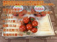 愛知県産GABAトマト130gパック×3入