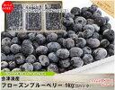 《値下げ》 ブルーベリー 1kg 無選別 冷凍 会津産 国産