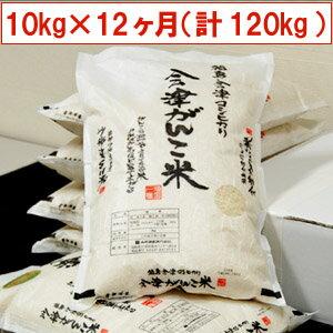 【送料無料】【特別栽培米】29年産米 頒布会 会津がんこ米(会津産コシヒカリ)10kg(5kg×2)×12ヶ月