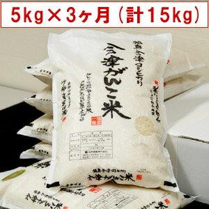 【送料無料】【特別栽培米】29年産米 頒布会 会津がんこ米(会津産コシヒカリ)5kg×3ヶ月